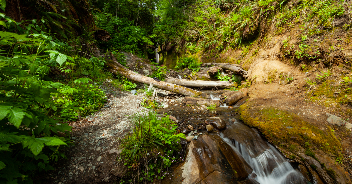 Beautiful places to visit in Vancouver Island travel itinerary